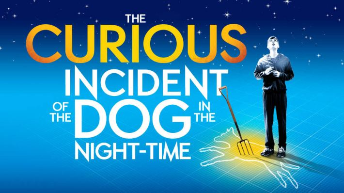 the_curious_incident_of_the_dog_in_the_night-time_play